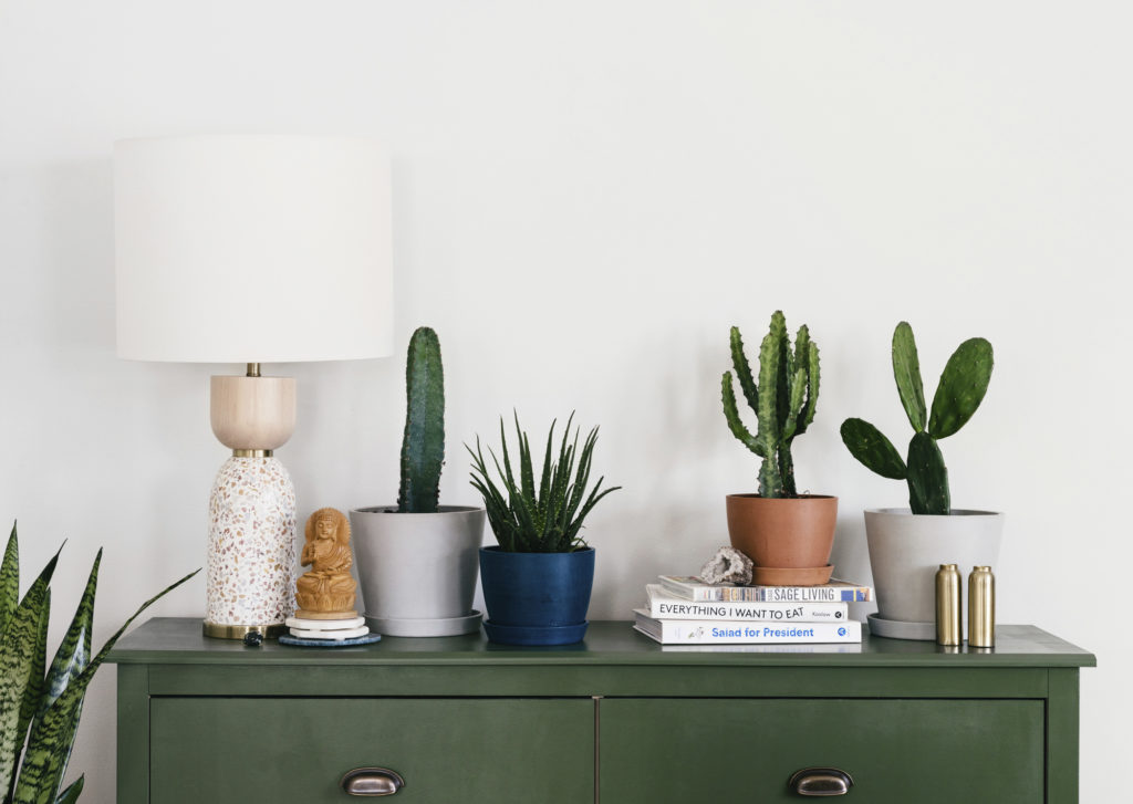 Dresser topped with plants and lamp